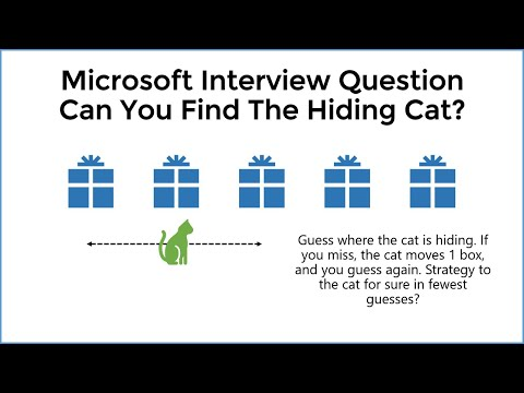 HARD Interview Question - Can You Solve The Hiding Cat Riddle?
