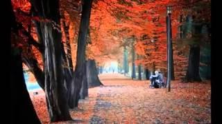 Осень   женщина за 40