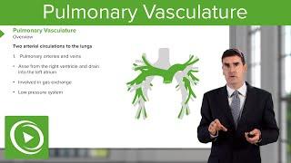 Pulmonary Vasculature – Respiratory Medicine | Medical Education Videos
