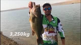 Gambar cover Sierra brava 3 250kg Black Bass Record 15/10/2017