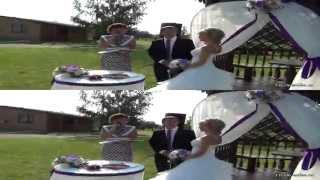 Свадебный клип 3Д