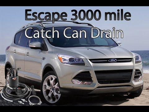 Ford Escape Ecoboost >> Ford Escape 2.0L Ecoboost TeamRXP Catch Can 3000 mile drain - YouTube