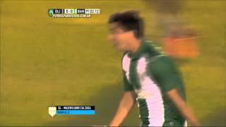 Gol de Calzada. Olimpo 0 - Banfield 1. Fecha 30. Primera División 2015. FPT.