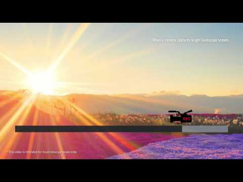 Panasonic VIERA AX900 Ultra Bright Panel & Dynamic Range Remaster
