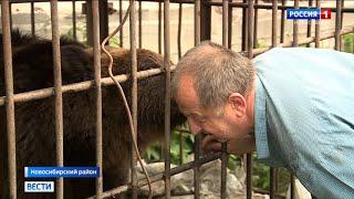 «Всё по закону!»: хозяин медведей доказал права на животных в Новосибирске