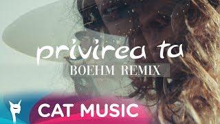DJ Project - Privirea Ta ( Boehm Remix ) image