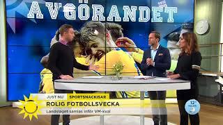 Så ser Sveriges chanser ut i VM-kvalet  - Nyhetsmorgon (TV4)
