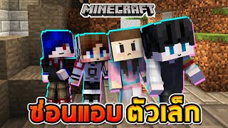 Minecraft Hide and Seek Tiny - Tiny body Big head, How to seek!