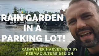 Rain garden in a parking lot! Rainwater harvesting by permaculture design