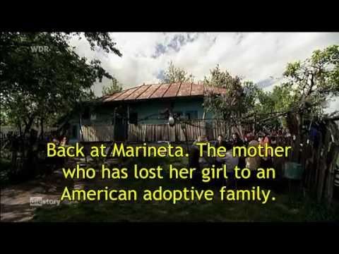adoption search