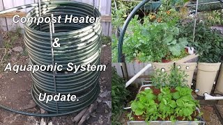 Aquaponic Compost Heater update, water temp's for Jade & Silver perch. AP Update July 2015