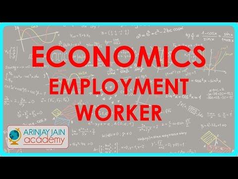 505.Class XI - CBSE, ICSE, NCERT -  Economics Employment - Worker