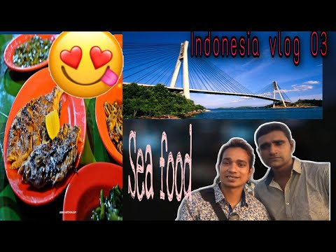 wonderful place in indonesia/singapore to batam island/BARELONG BRIDGE VLOG 03