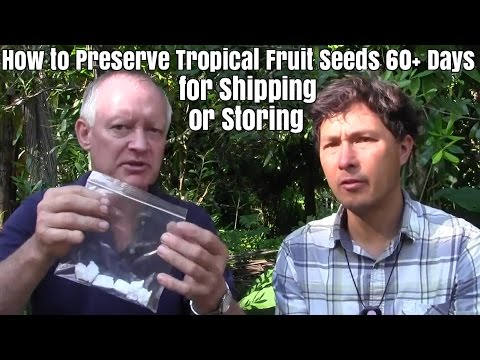 How to Preserve Perishable Tropical Fruit Seeds for 60+ days for Shipping  or Storing
