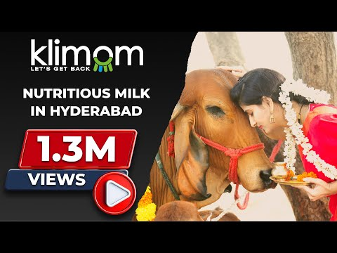 Nutritions Milk in gachibowli  - Klimom