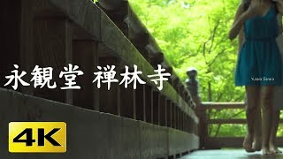 [4K] 永観堂 禅林寺 京都の庭園  Eikan-do Temple Zenrin-ji [4K] The Garden of Kyoto thumbnail