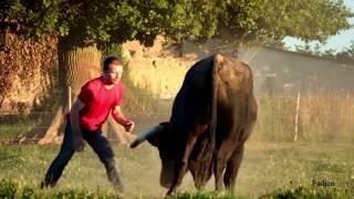 Un homme rentre dans le champ d'un taureau de corrida de plus de 700 kg .