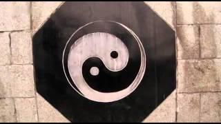 Wege zu Tao - Die Kunst der Unsterblichkeit