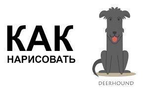 Рисунки собак карандашом. КАК поэтапно НАРИСОВАТЬ СОБАКУ(Как нарисовать собаку поэтапно карандашом для начинающих за короткий промежуток времени. http://youtu.be/y_JxtW5howM..., 2015-06-25T06:34:50.000Z)