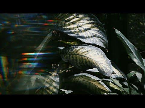 Burak Yeter - Echo (Fılatov & Karas) Remix