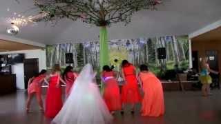 Танец невесты и подруг на свадьбе Марии и Александра.