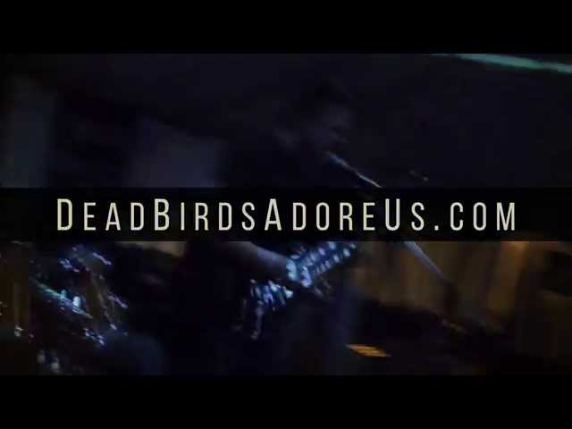 Dead Birds Adore Us Promotional Video