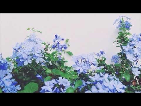 6/10 - dodie (karaoke/instrumental version)