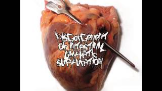 DISGORGEMENT OF INTESTINAL LYMPHATIC SUPPURATION - Necrotomy