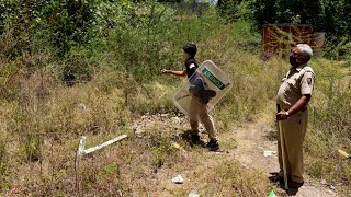 Nashik: Forest officials conduct search operation for leopard who disappeared after injuring a woman