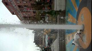 Bull Dog Funny Fountain South Street Philly  Part 2