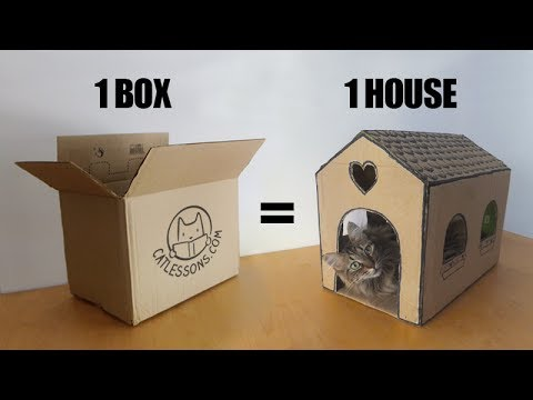 Transform a simple box into a cat house youtube for How to make a house from cardboard box