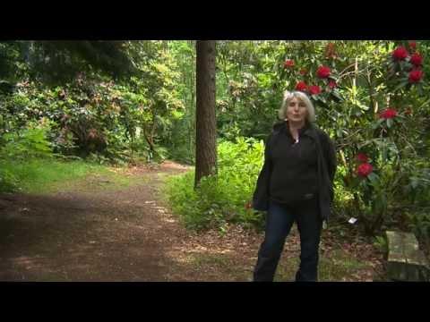Jardin de Normandie : les jardins de Clairbois