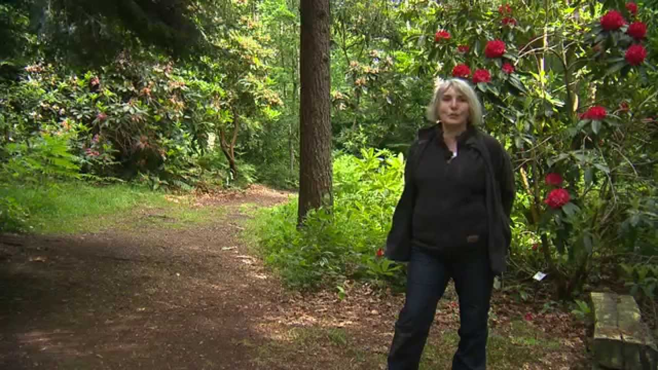 Jardin de normandie les jardins de clairbois youtube for Jardin youtube