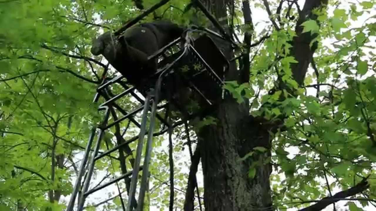 Set Up A Ladder Stand Safely For Deer Hunting Youtube
