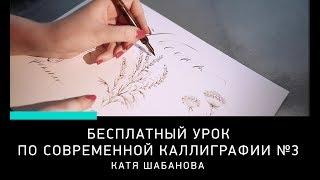 БЕСПЛАТНЫЙ УРОК КАЛЛИГРАФИИ, урок 3