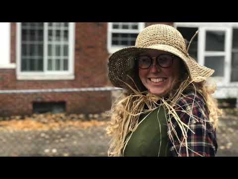 Ottawa Hills elementary school  || #AZD_ME || Halloween Activities 2018