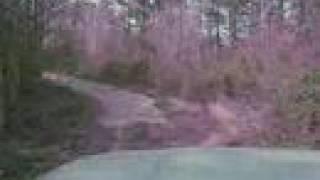 Old Georgia Go Kart Track