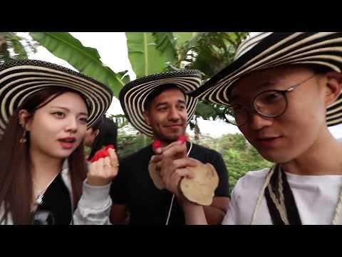 APRENDIMOS LA REALIDAD SOBRE EL CAFÉ - K TEAM video # 25