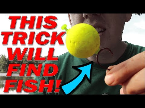 BANK FISHING Trick to finding fish!!!  Catch more fish from