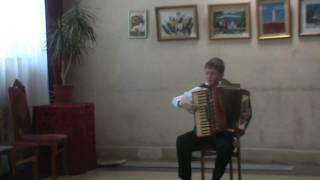 Игра на аккордеоне.