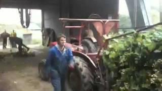 Hop Picking Hoads Farm Sandhurst