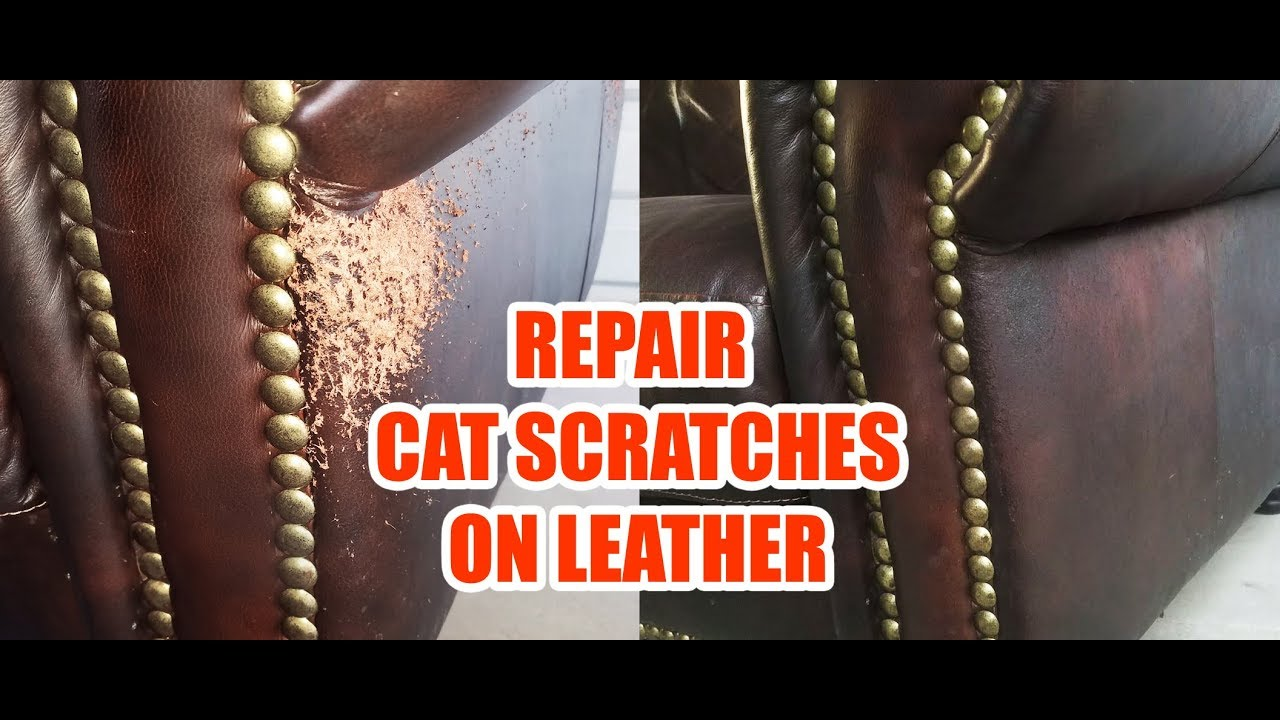 Cat Scratches Leather Sofa Repair (Quick & Easy) - YouTube