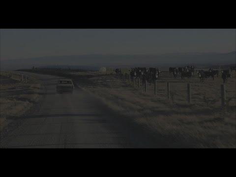 Nadia Reid - Call the Days