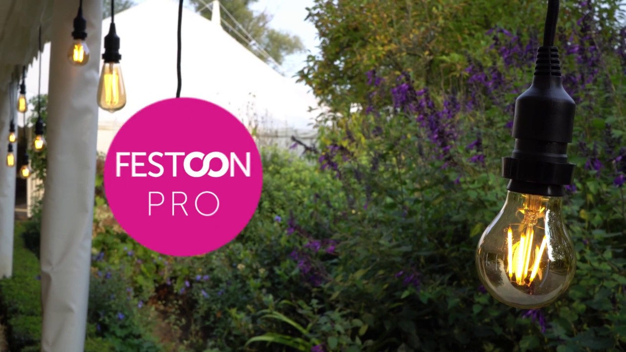 Professional Festoon Lighting