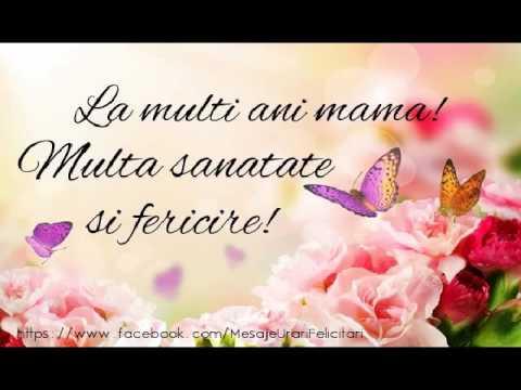 Mama Ani Ziua