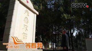 """[等着我]守墓19年 退伍老兵为不相识的""""家人""""找家  CCTV"""