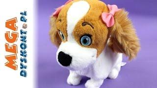 Lola - Poznaj Grzecznego Pieska! -  IMC Toys - 094802