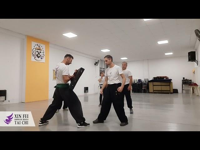 Entrenando fuerza y resistencia. Kung Fu Wu Shu.