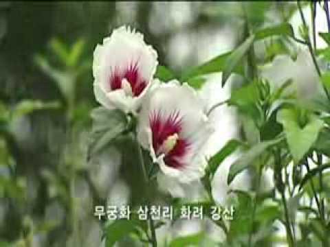 Aegukga-Korean National Anthem