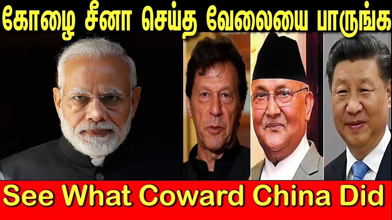 கோழை சீனா செய்த வேலையை பாருங்க   See What Coward China Did   Tamil   Bala Somu